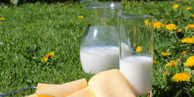 El calcio protege los dientes del ácido que causan las caries (PIxabay)