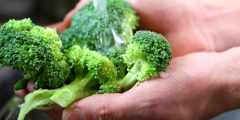 El brécol o brócoli ayuda a mantener el sistema autoinmune (iStock)