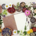 10 plantas, hierbas y frutas que ayudan a adelgazar