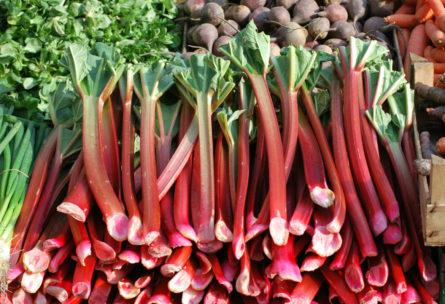 El ruibarbo tiene múltiples beneficios para la salud en infusión o en polvo (iStock)