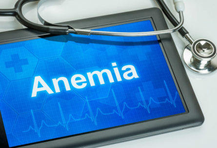 El hierro es esencial para producir glóbulos rojos y si bajan sus niveles se produce la anemia ferropénica o anemia del corredor. (iStock)