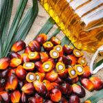 10 alimentos que nos sabías que llevan aceite de palma