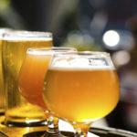 Estrella Galicia se proclama la mejor cerveza de España