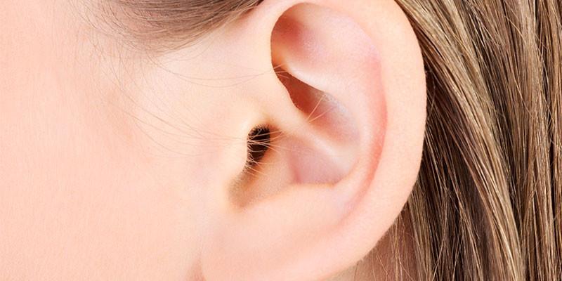Músculos que mueven las orejas: prescindibles (iStock)