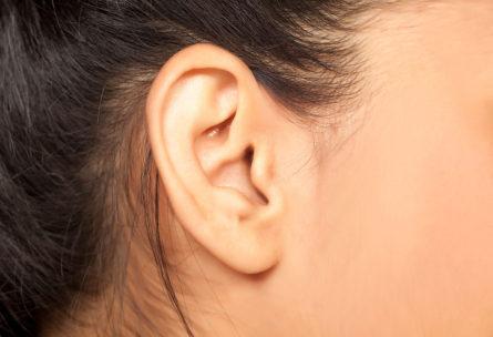 Los músculos que mueven las orejas, y los lóbulos de las mismas, ya no sirven para nada (iStock)