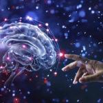 La importancia de la estimulación cognitiva en nuestra salud mental