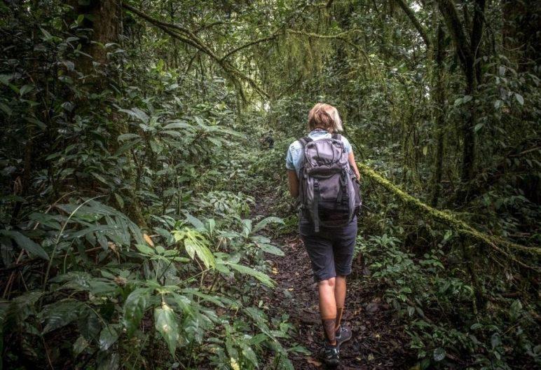 Mujer excursionista (unsplash)